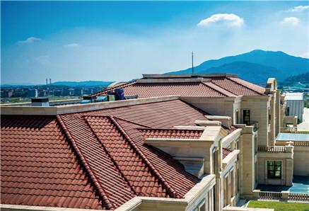 正阳楼屋面防水工程