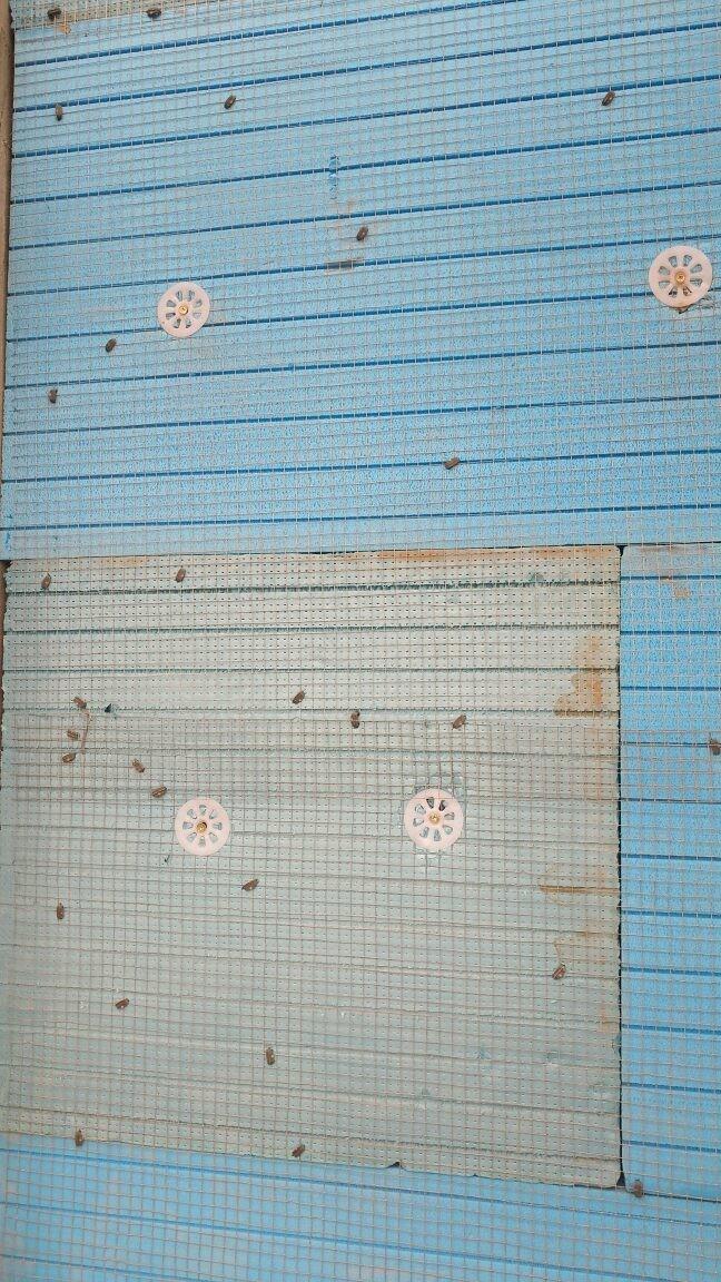外墙保温锚固件安装
