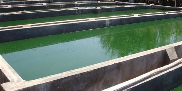 开敞式圆形混凝土消防水池蓄水池