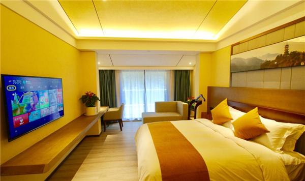 安康瀛湖翠屏岛酒店酒店豪华套房