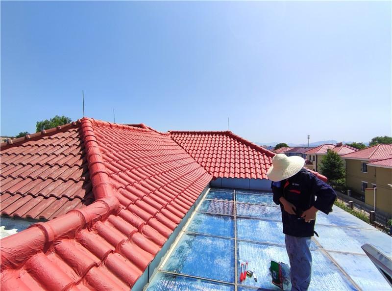 别墅屋面渗漏水施工完成照片